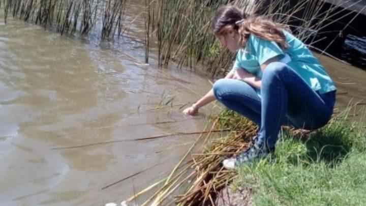 CHASCOMÚS: Recomiendan extremar cuidados para evitar la proliferación de mosquitos