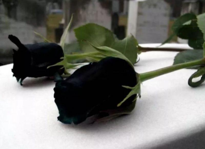Triste noticia: Conmoción por el suicidio de Ángeles Alconada Alfonsín
